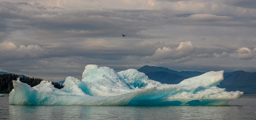 An artistic-looking iceberg with a small eagle flying overhead