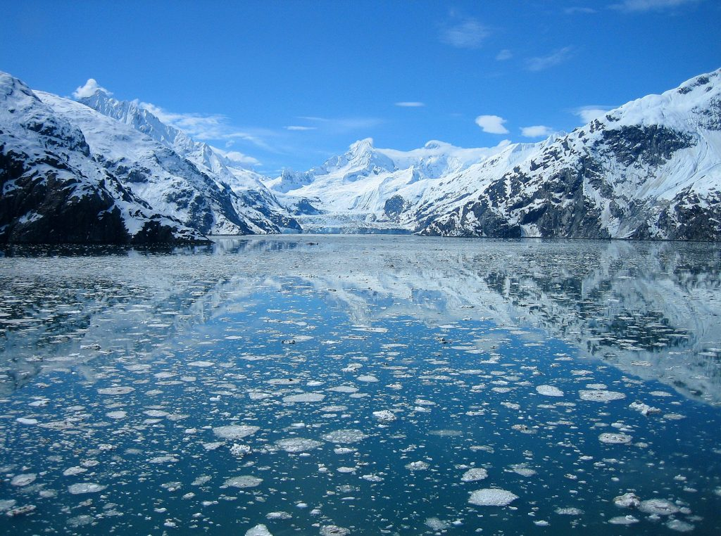Icy water and glaciers in Glacier Bay National Park