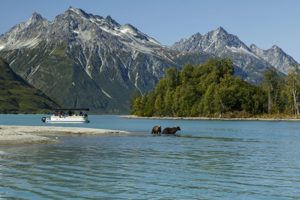 pontoon and bears in Lake Clark National Park