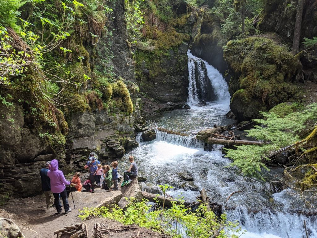 Hikers marvel at a small waterfall in green surroundings