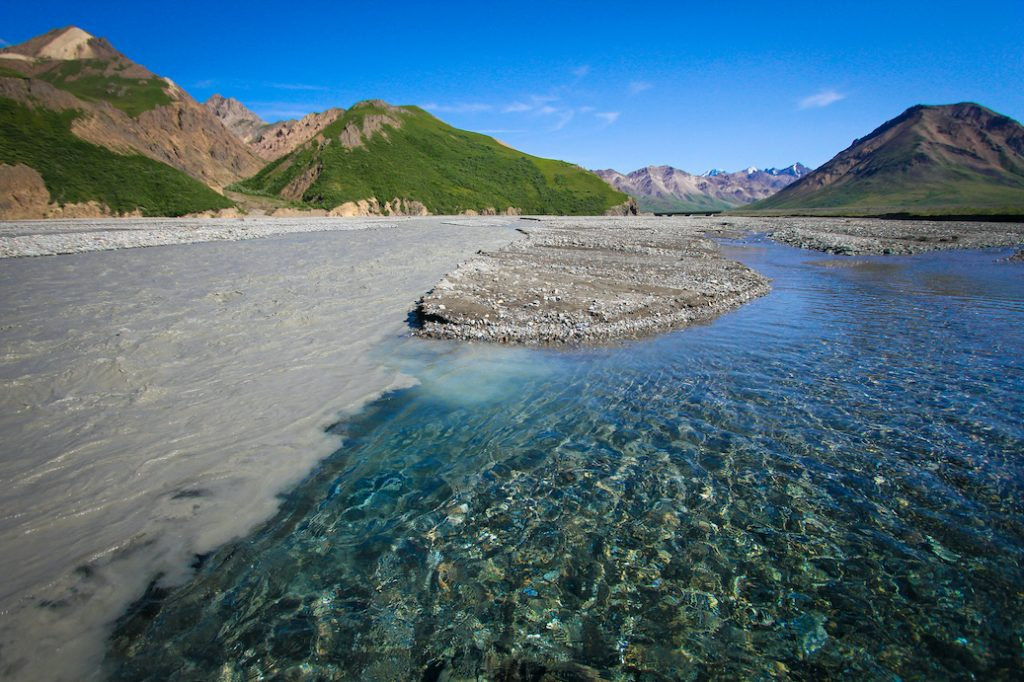 Line of murky, silty water and clear water meeting on a river in Denali