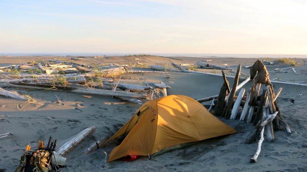 Tent with some driftwood propped up in the sand on one side