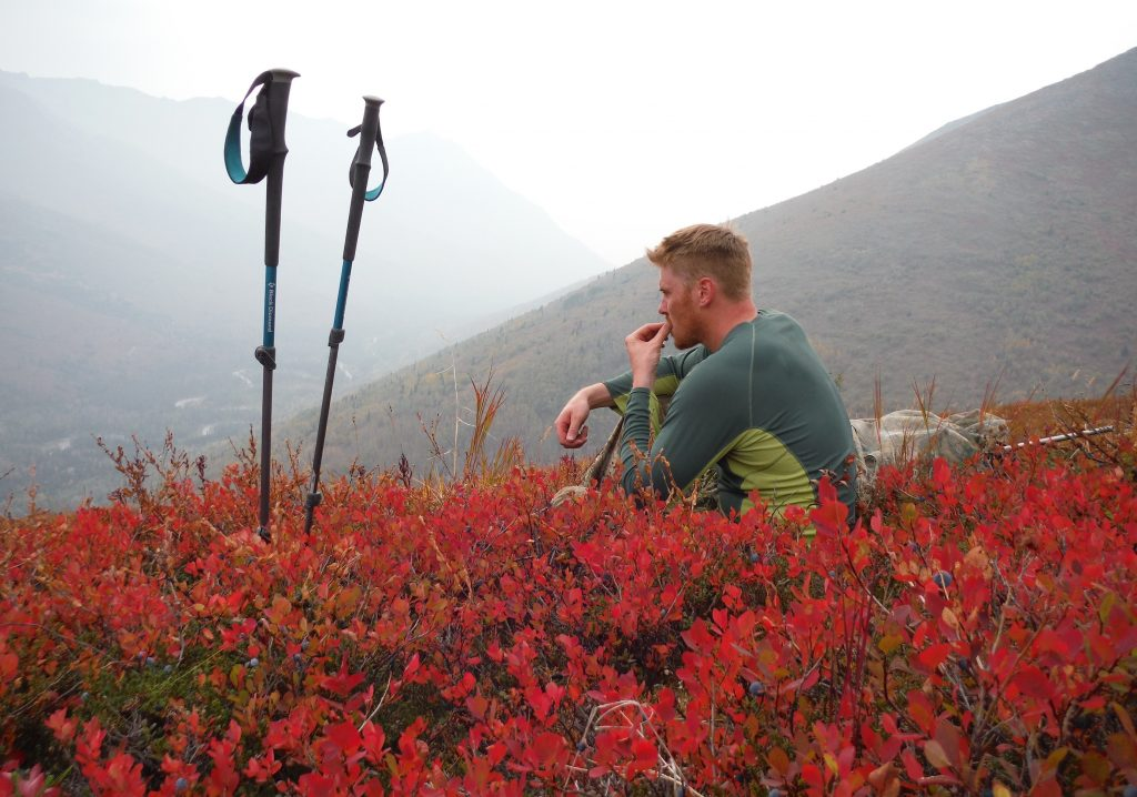 hiking poles and a young man sitting in red foliage eating berries