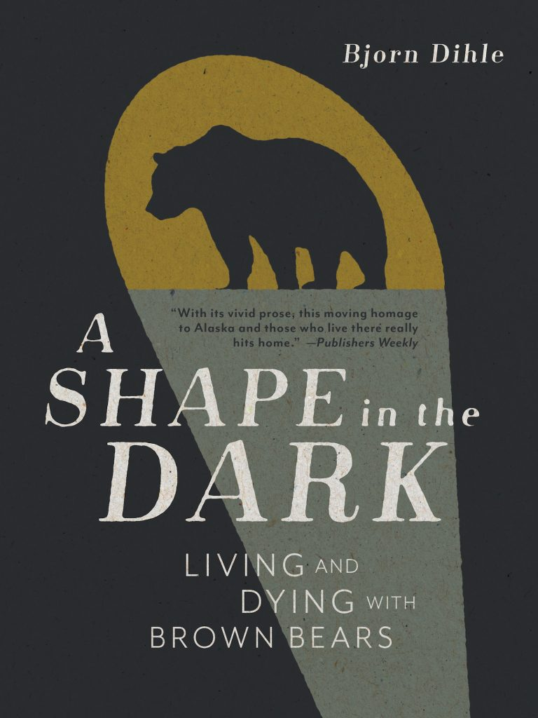 Book cover for A Shape in the Dark