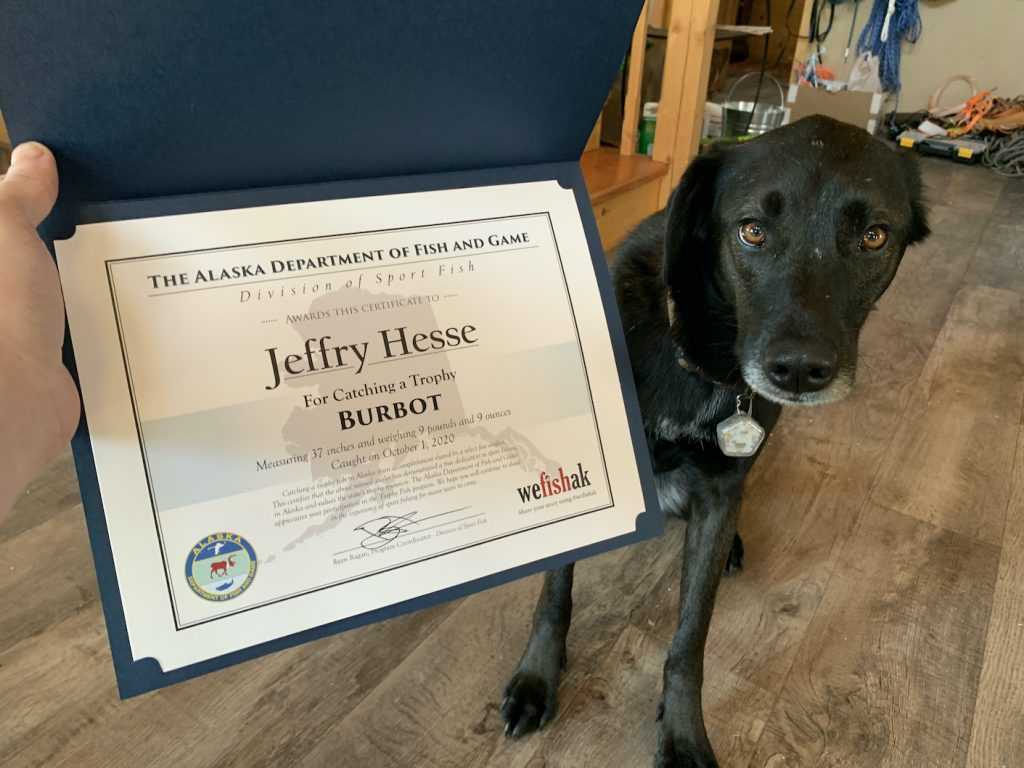 Certificate from ADF&G and Jeffry Hesse's dog