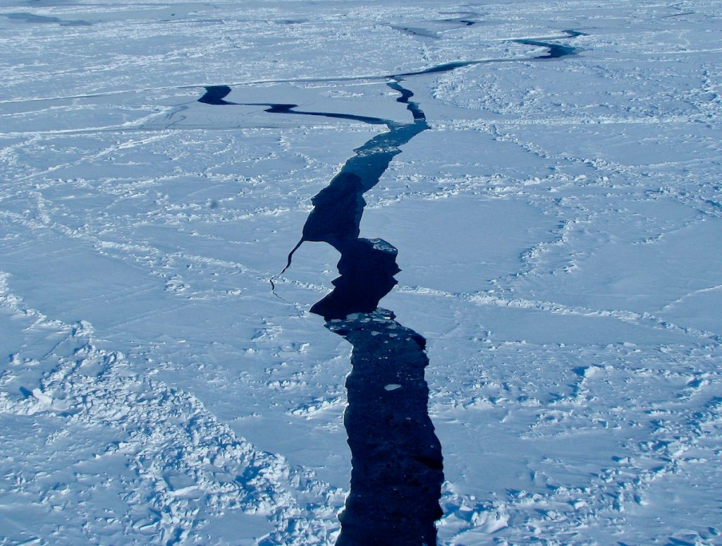 A crack in sea ice exposes open water