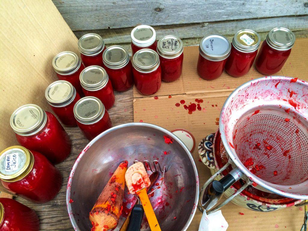 Jarred highbush cranberry creations