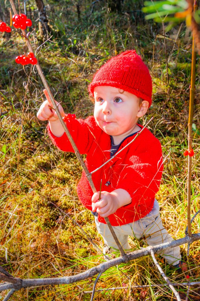 Kid in red coat and hat pointing at high bush cranberries
