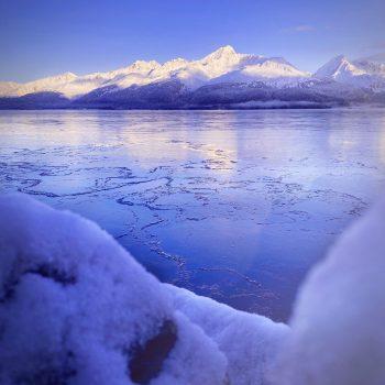 Icy Bay
