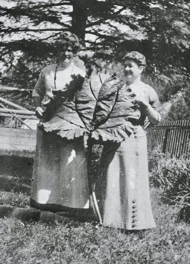 black and white photo of women in dresses holding a leave the size of their torsos