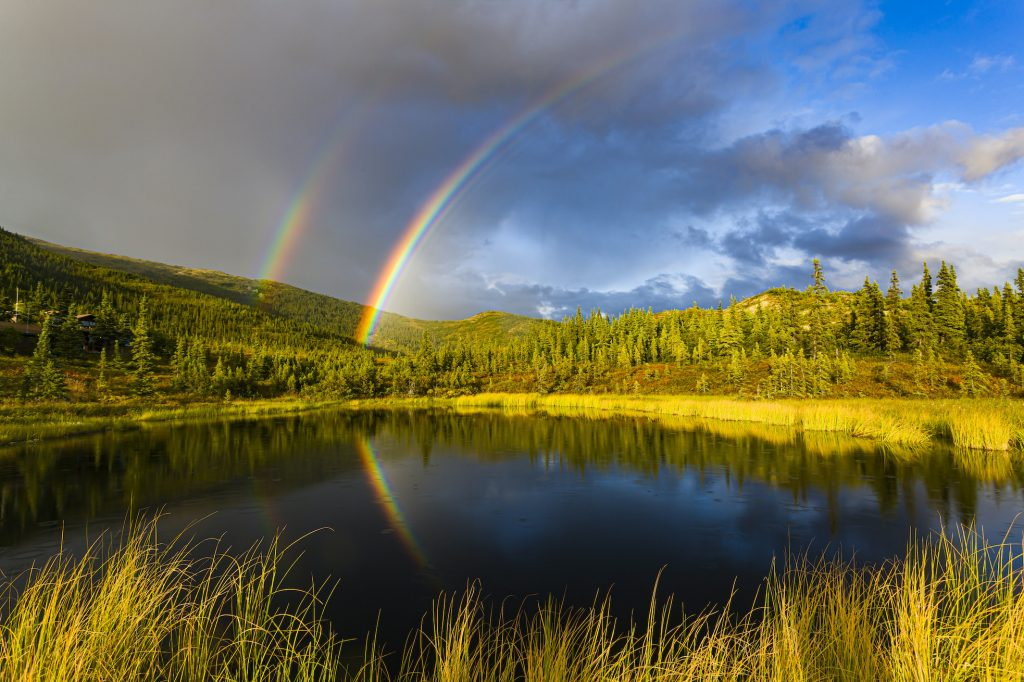 Double rainbow in landscape by pond